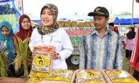 Lamtim Sentra Padi Lampung